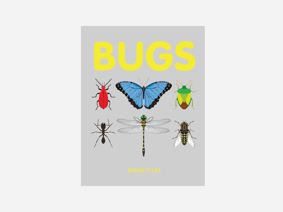 Books - Bugs -  Pavilion Children's Books, published September 2017 -  Author and illustrator