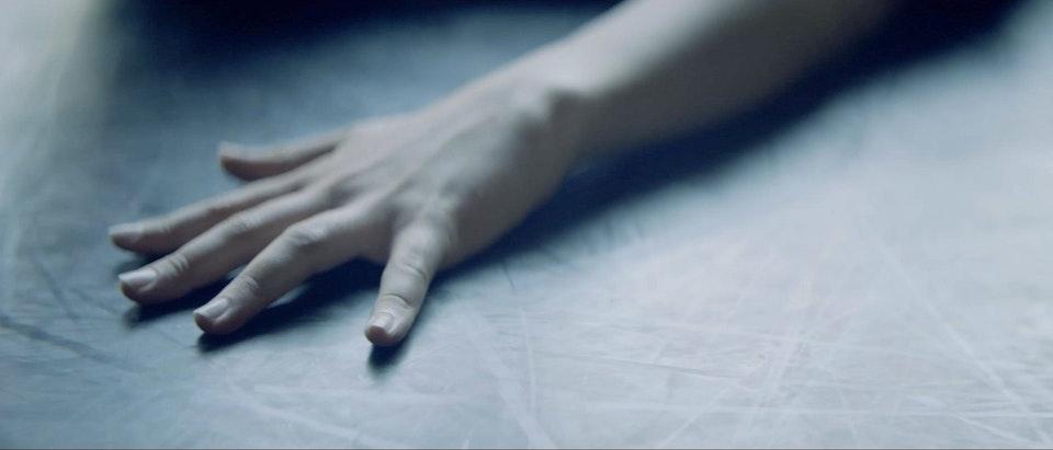 Bodies x Dior -