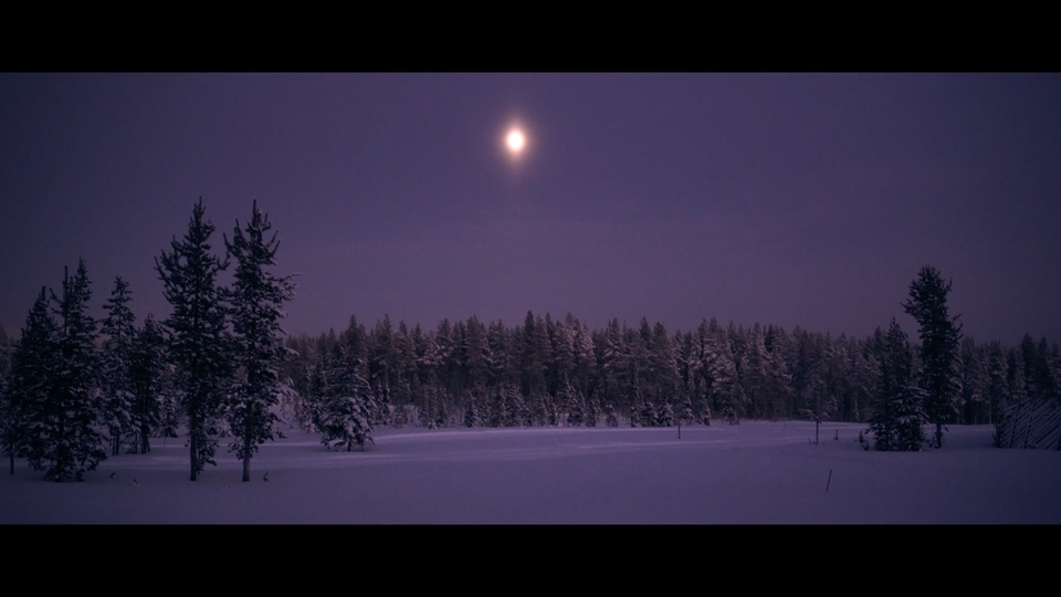 White Adventure, a trip in Finnish Lapland by -40°C