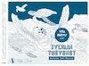 Sylvain Thevenet [2017-2020]