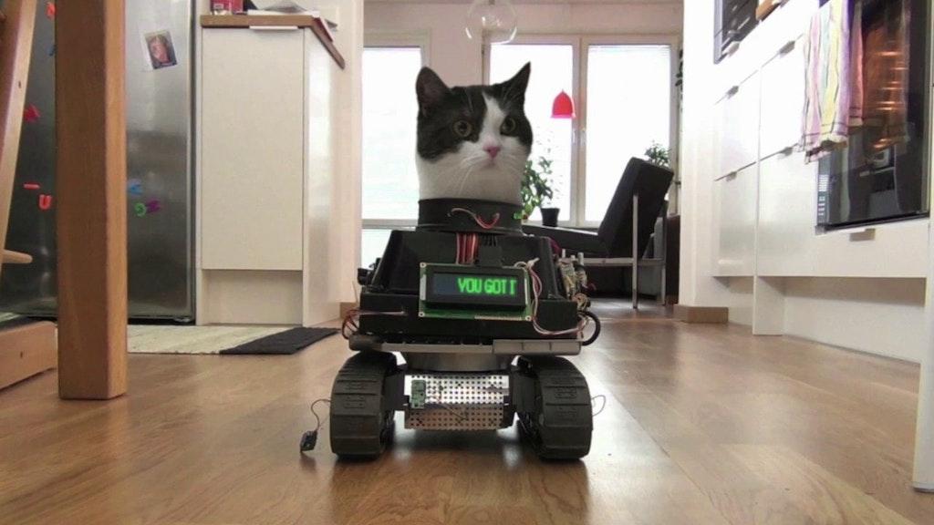 OREO robocat