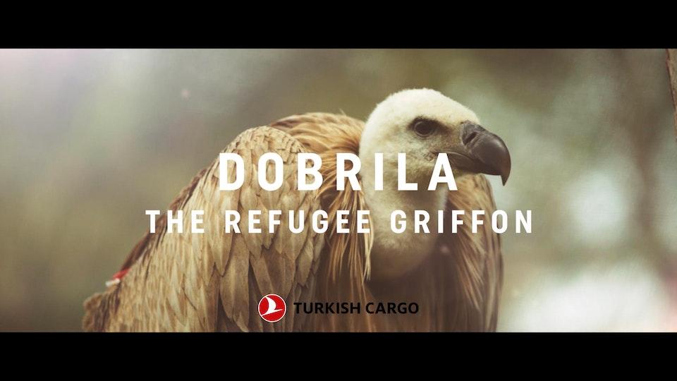 MISSION RESCUE - TURKISH CARGO