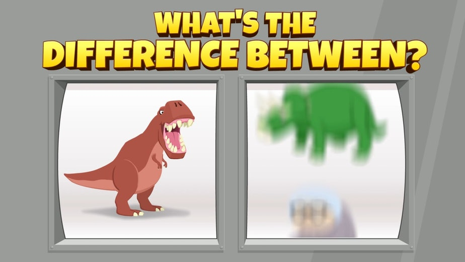 WHAT'S THE DIFFERENCE BETWEEN A T REX AND...