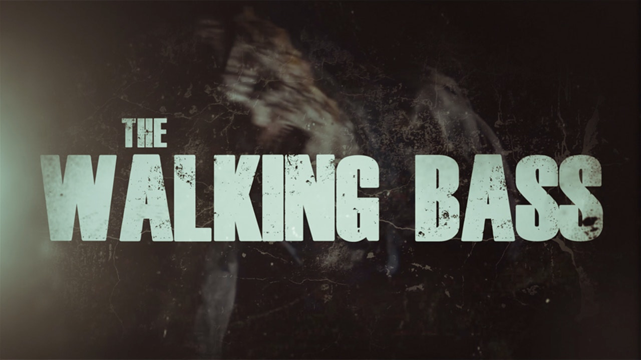 THE WALKING BASS