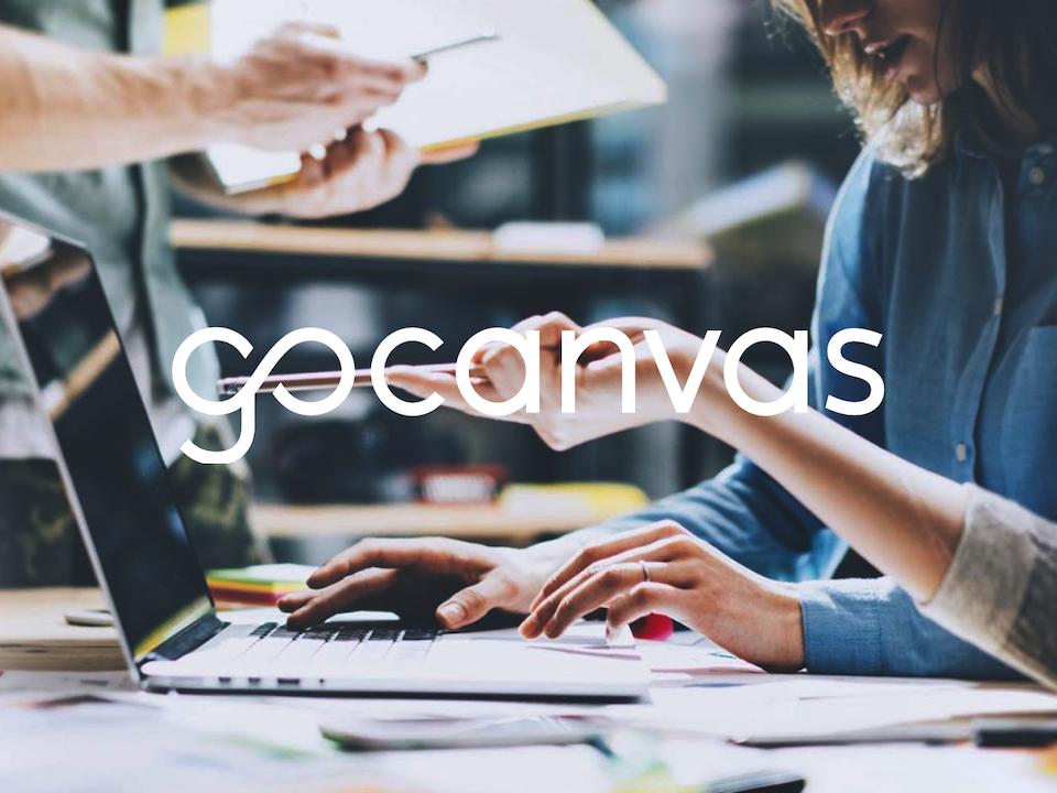 UX | ER - GoCanvas: Understanding Our Users