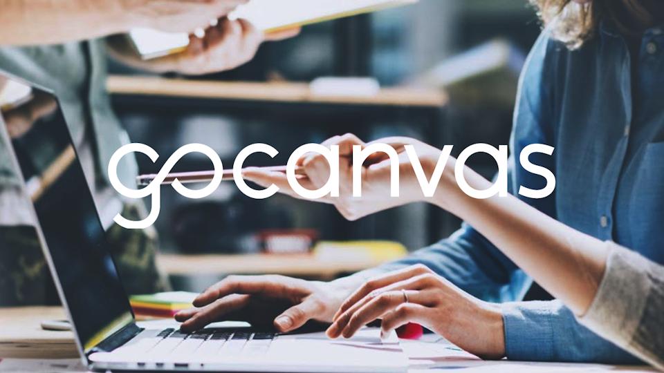 UX   ER - GoCanvas: Understanding Our Users