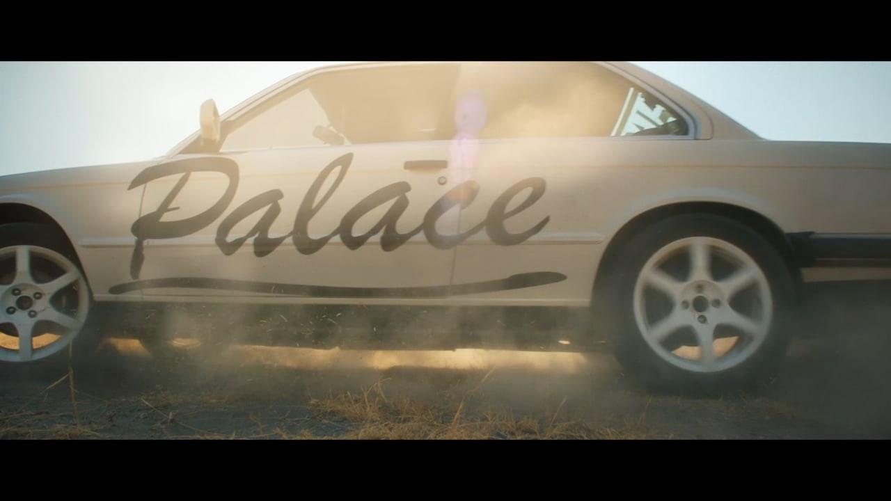 Palace Ralph Lauren