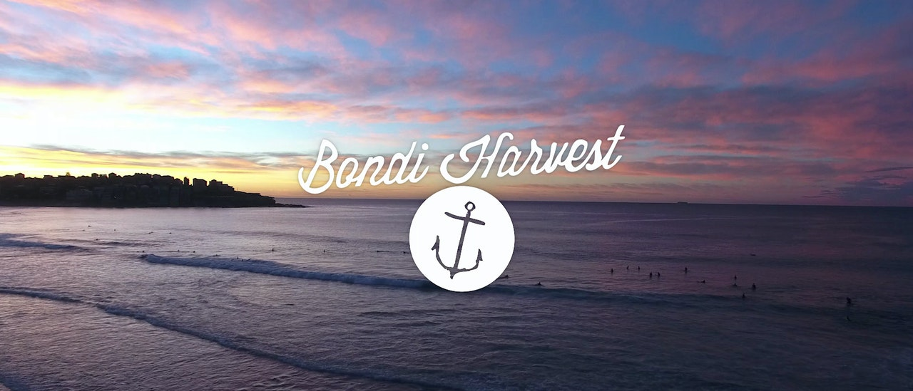 Bondi Harvest | TV Series