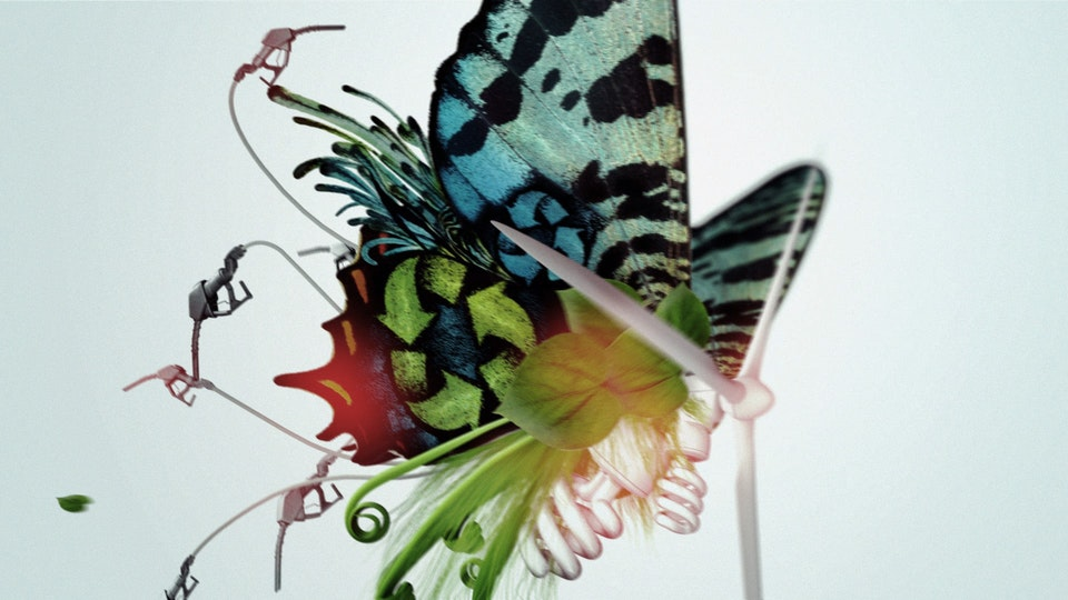 The Work of Director Ash Bolland - 'BUTTERFLY' MSN