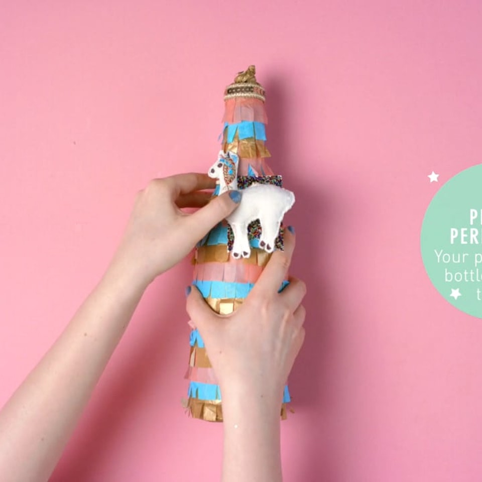 Cat & Owl Films - Paperchase - Pinata