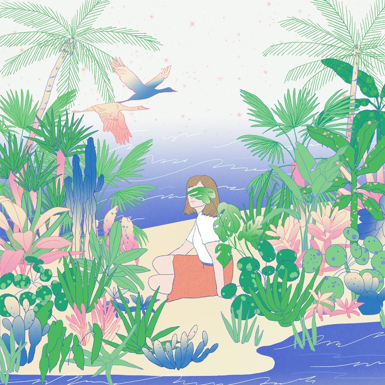 Illustrations 2016-2019