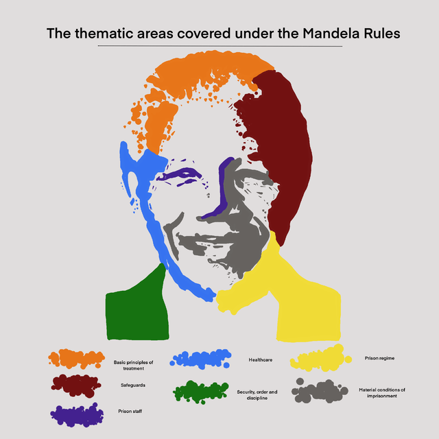 The Portrait of Nelson Mandela (Rules)