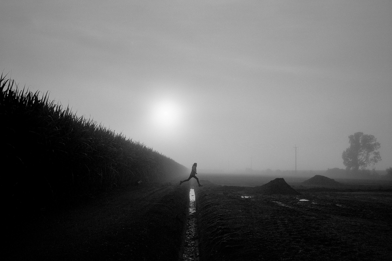 Robert Sherwood by Trent Mitchell