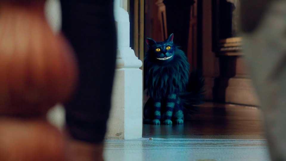 Hidden City - The Hunt for the Cheshire Cat