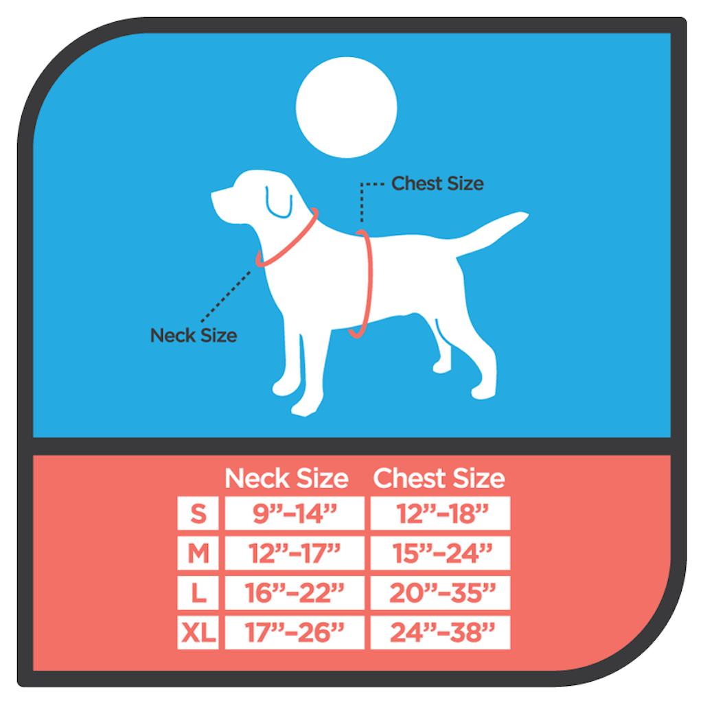 Dog Collar Tag, HeadyPet, 2018