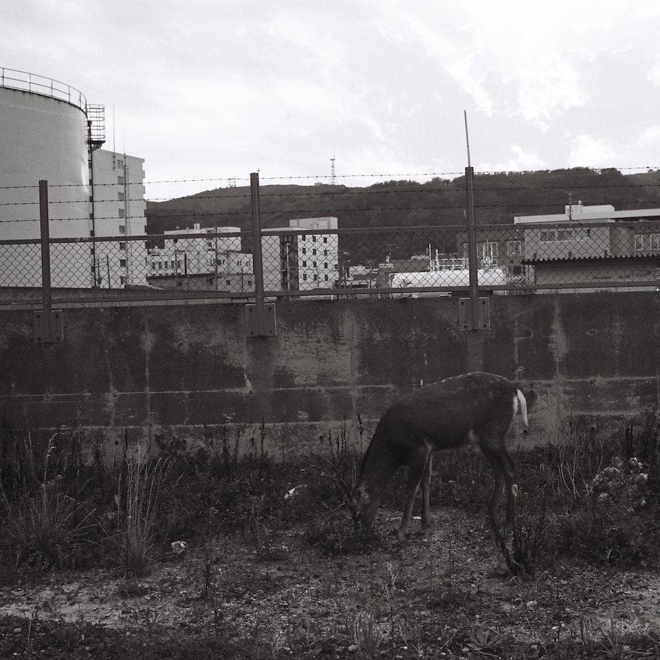 PHOTOGRAPHY sin título (1 de 1)-20