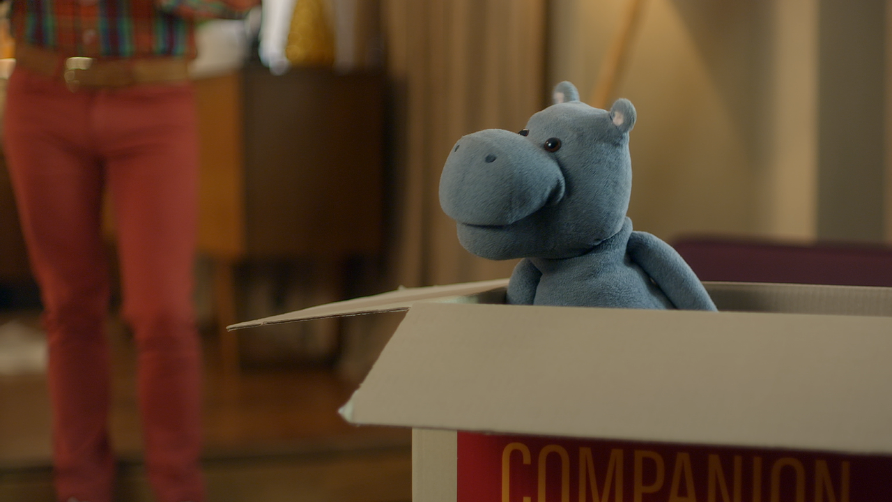 Hippo Insurance   Could things get any worse?
