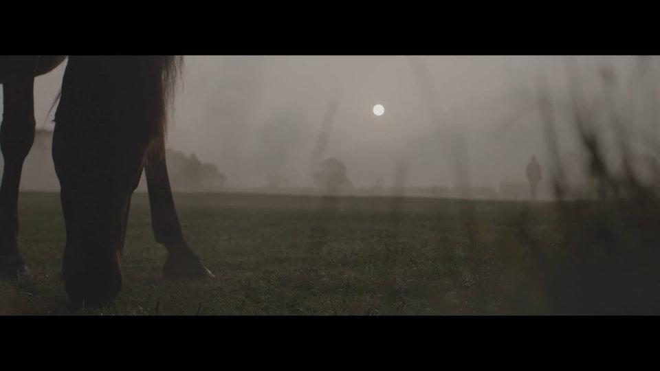 Equine Society