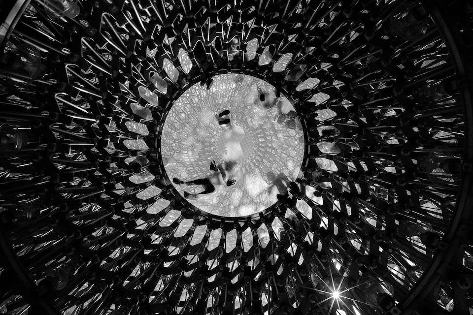 Architectural - 'The Hive', Kew Gardens, Surrey, UK