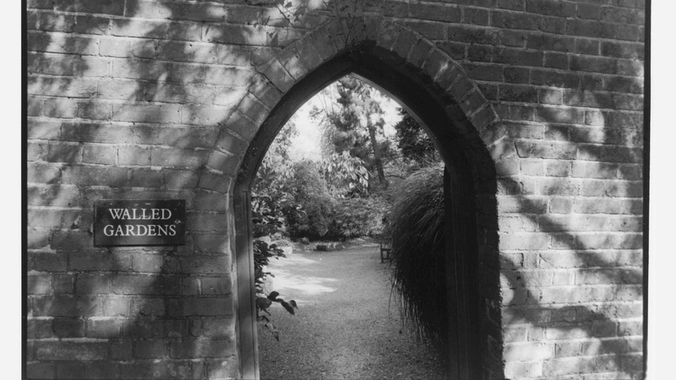 Home of Springs, Trengwainton walled garden