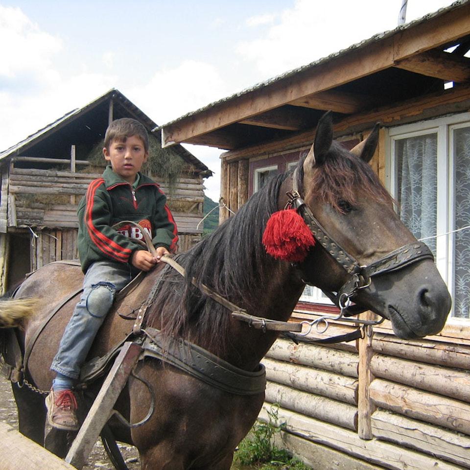 Romania IMG_0536