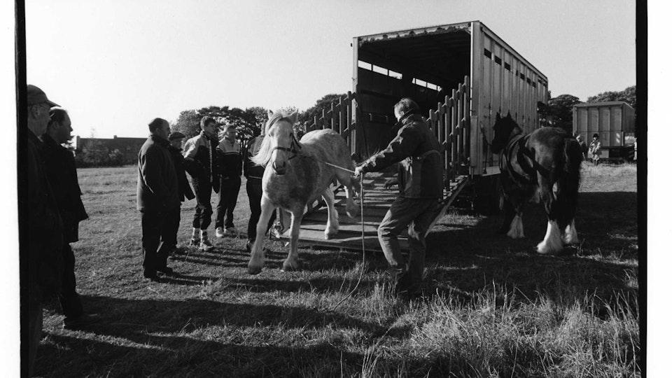 Stow Fair trailer & horse