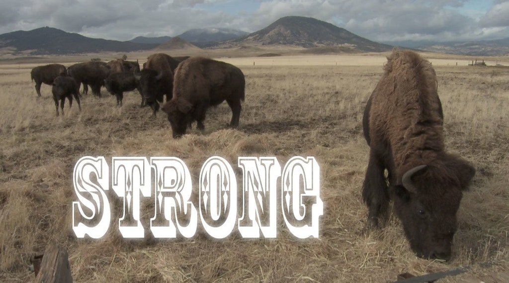 Strong - Documentary