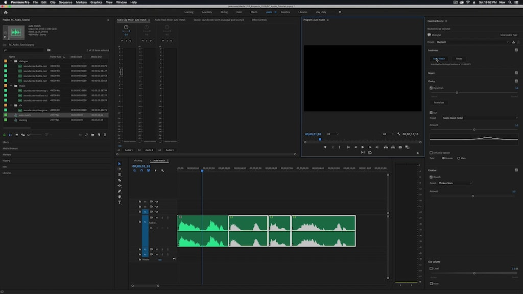 Premiere Pro Quickstart: Audio Basics