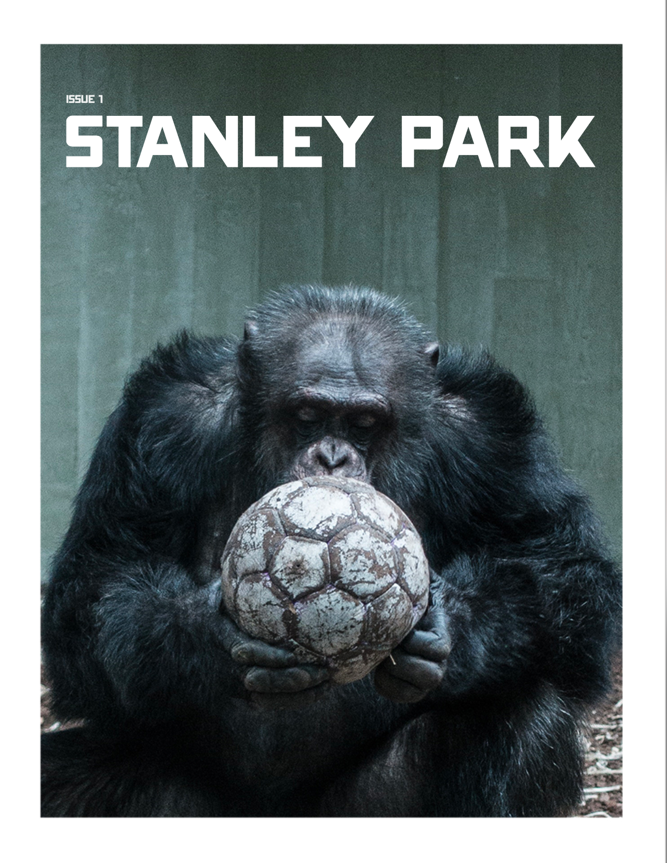 STANLEY PARK FRONT COVER
