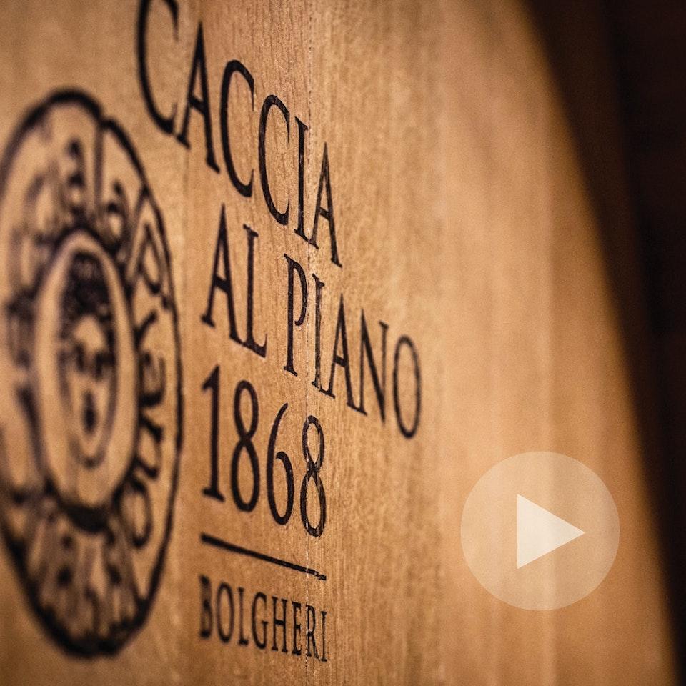 Michael Loos - Caccia al Piano Winery