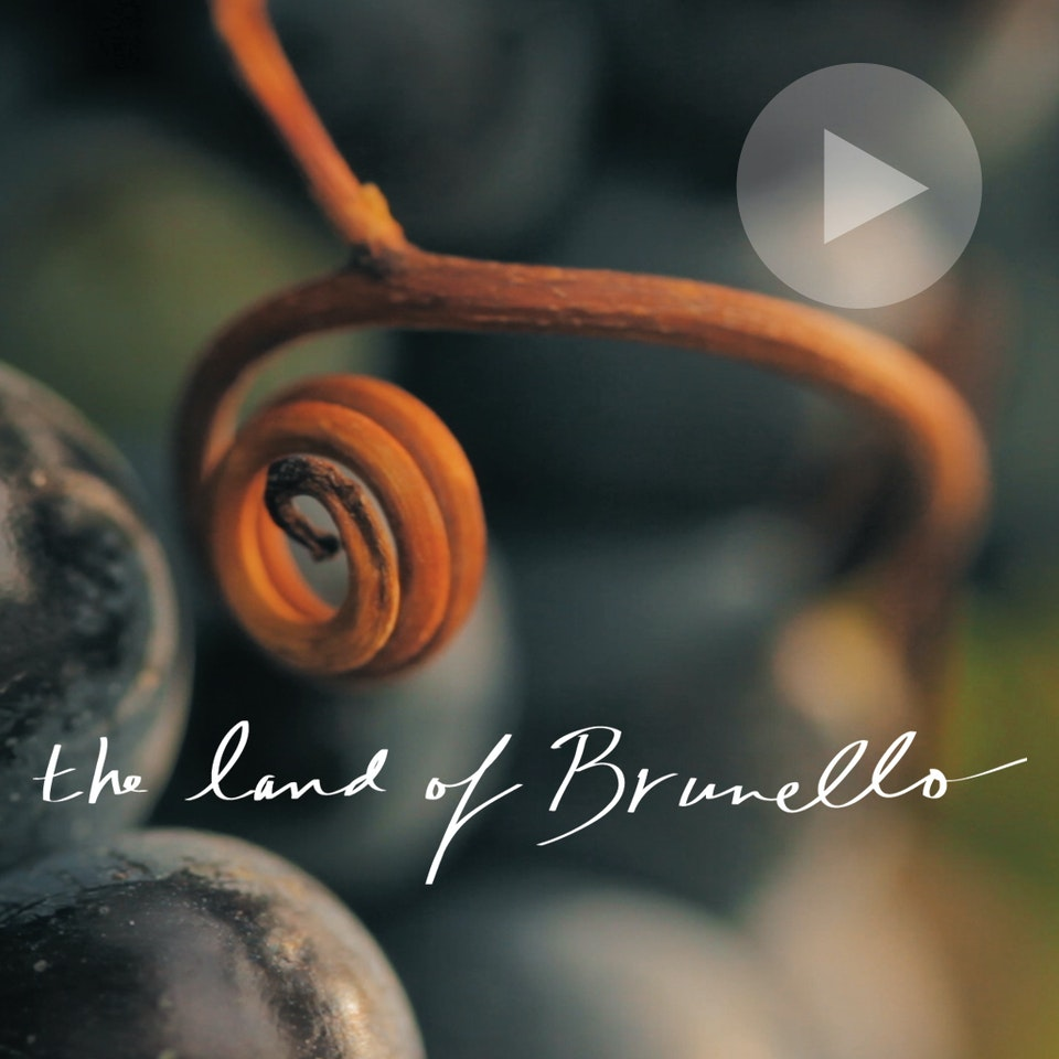 Michael Loos - FILM   The Land of Brunello Wine