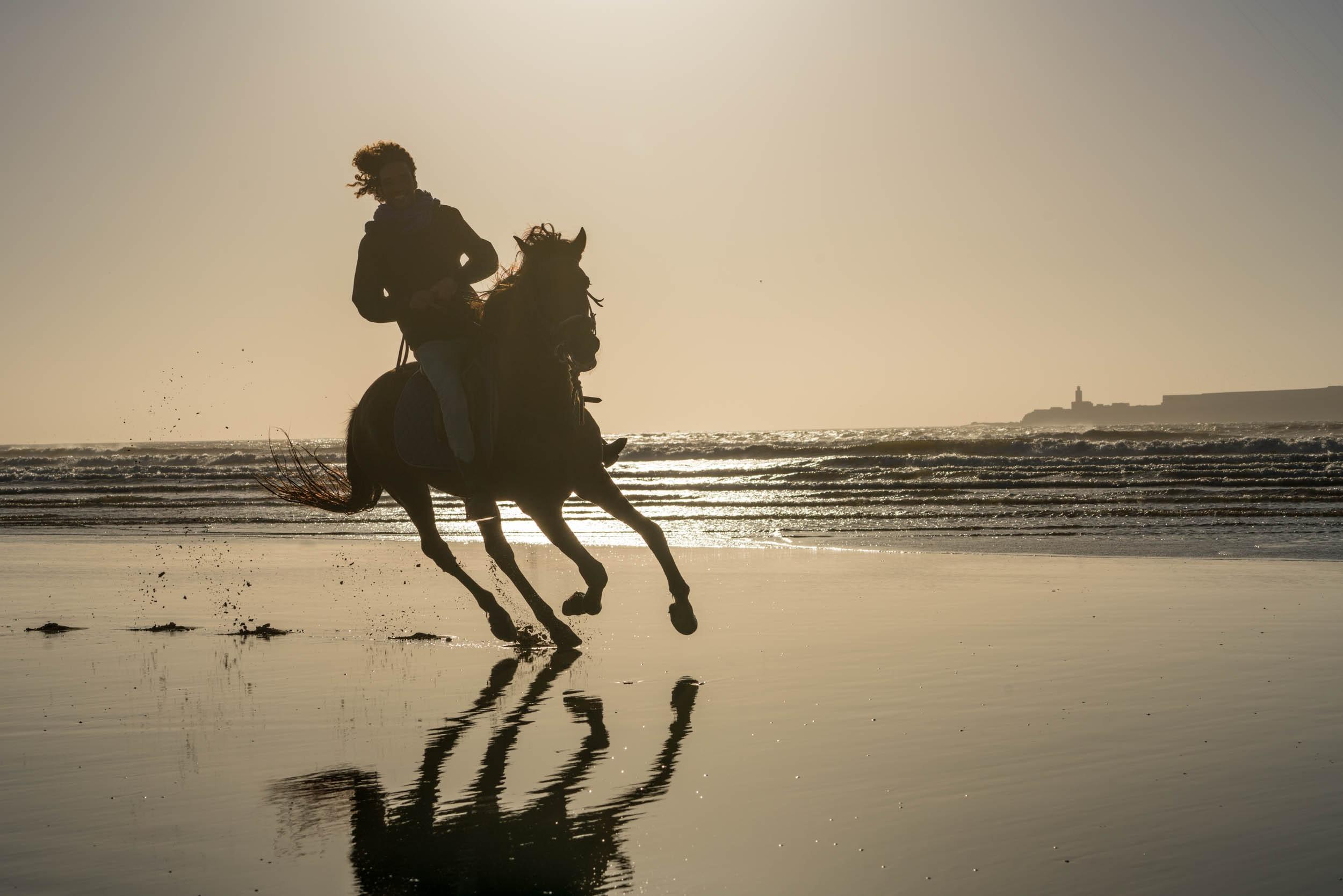 Michael Loos - ridingHorseAngle0696