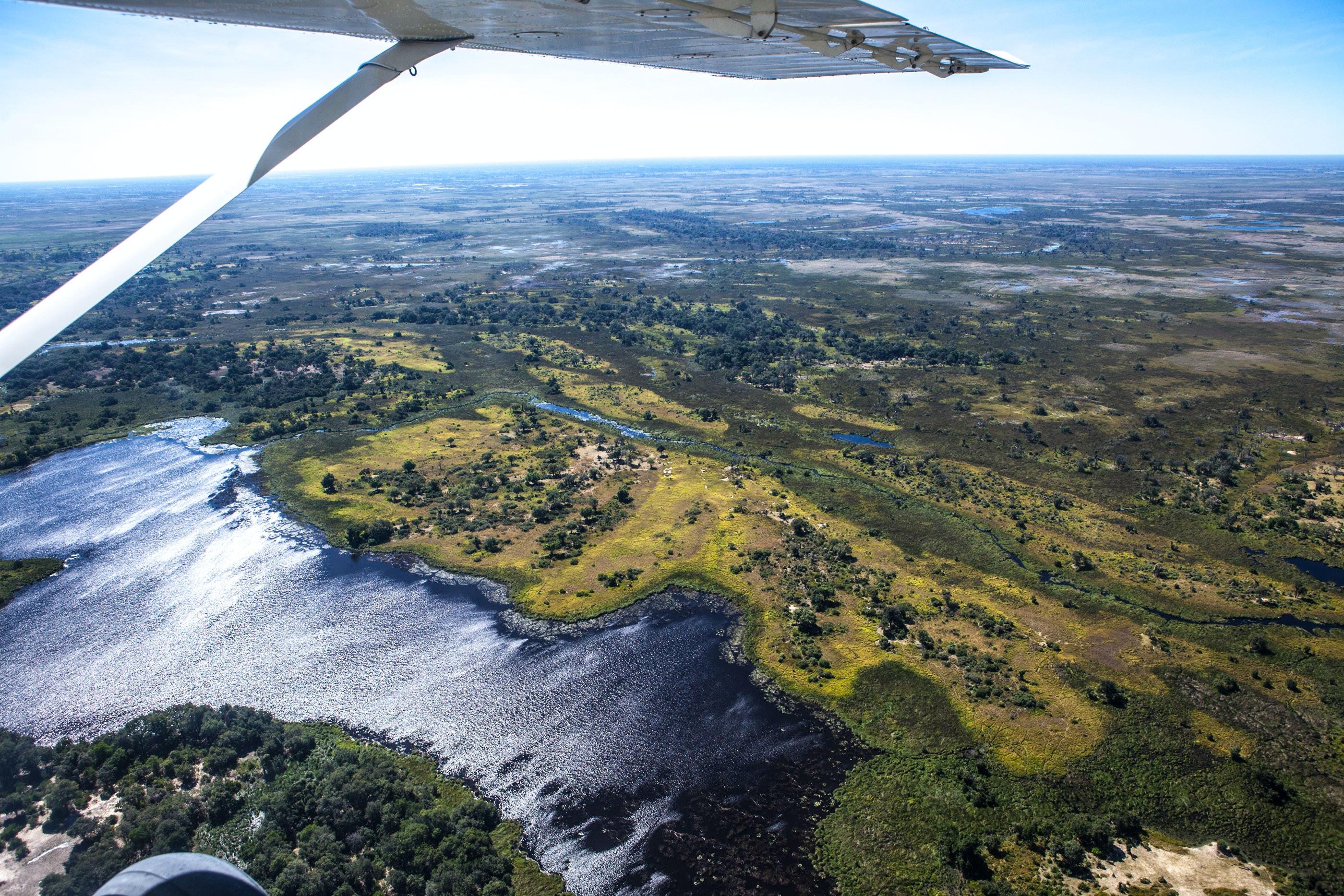 Michael Loos - Botswana2016-3908