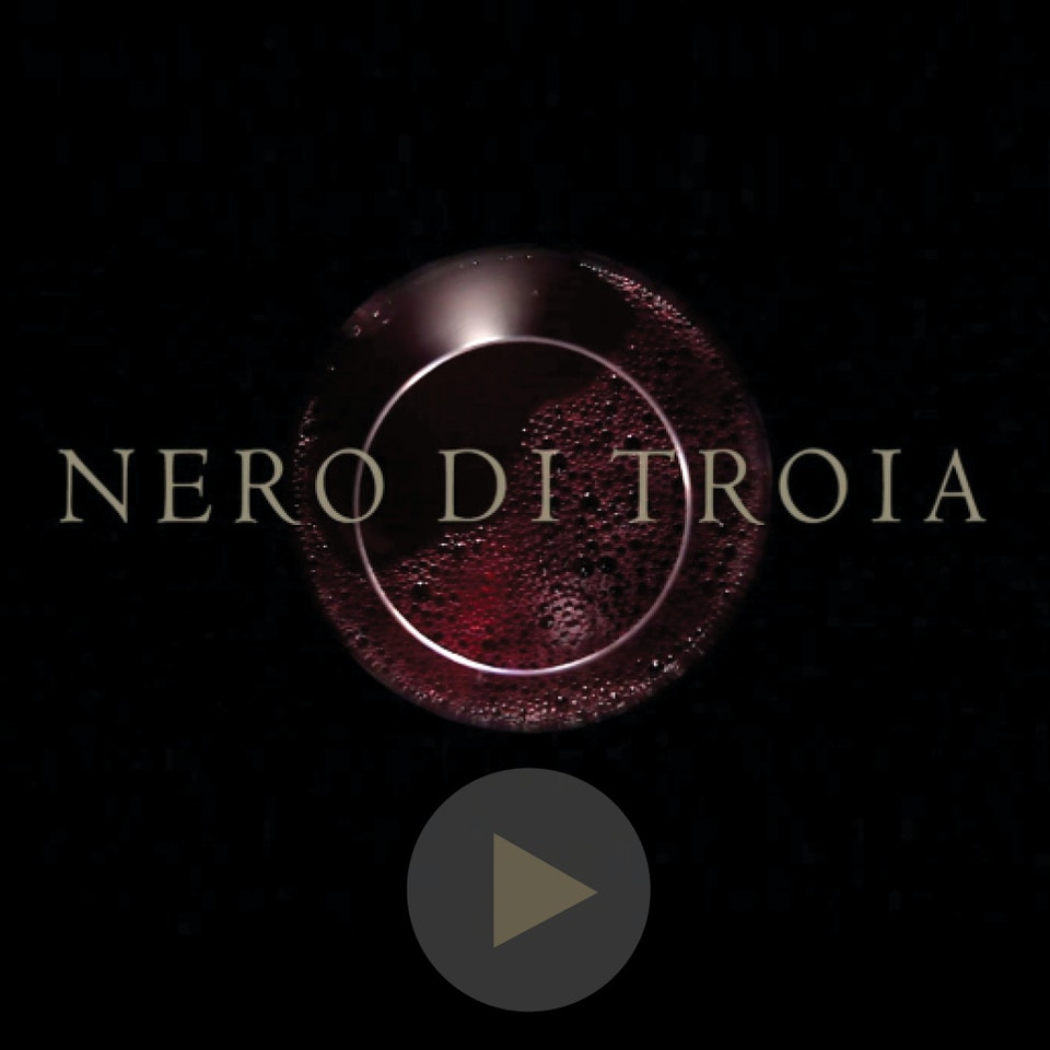 Michael Loos - FILM   The Wine Lands of Nero di Troia