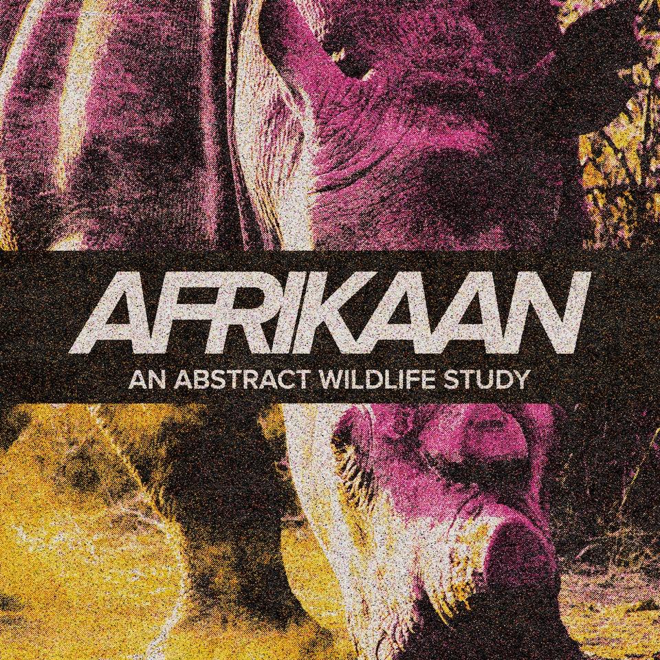 Afrikaan