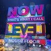 Now That's What I Call Level: House Floor