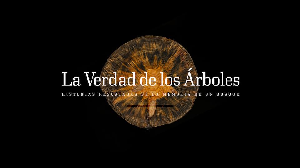 La Verdad de los Árboles / The Truth about Trees