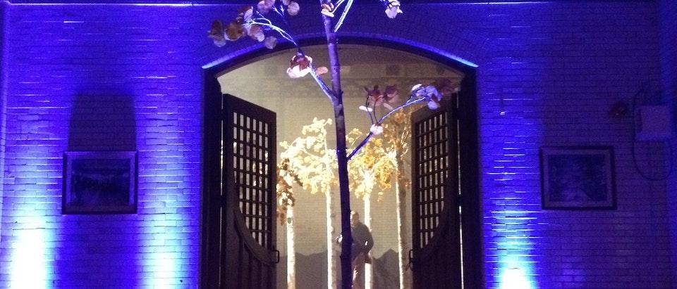 Nuit Blanche - Poplar Paradiso (installation)