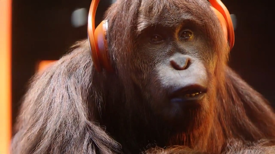 No.8 - Audible: Orangutan