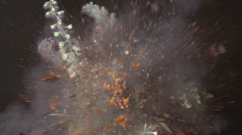 Ori Gersht trailer for 'Big Bang' - Martin Testar