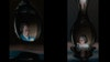 'Eternal'  clip  Ori Gersht