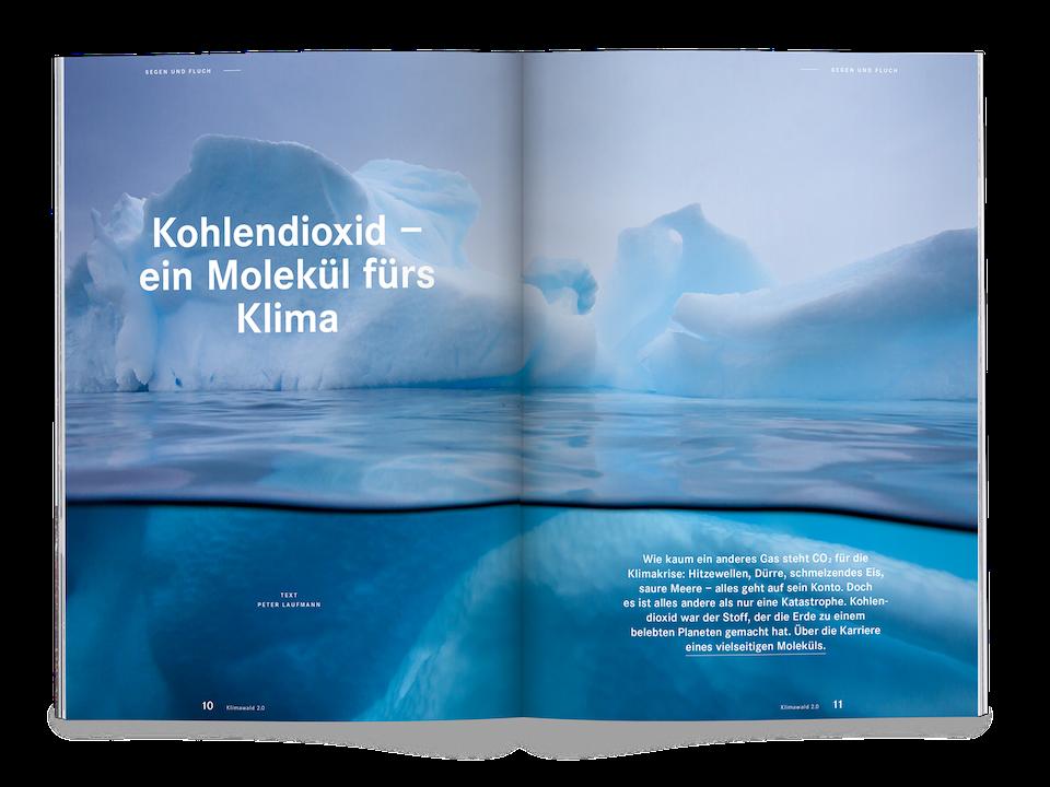 Issue 16 Bayerische Staatsforsten