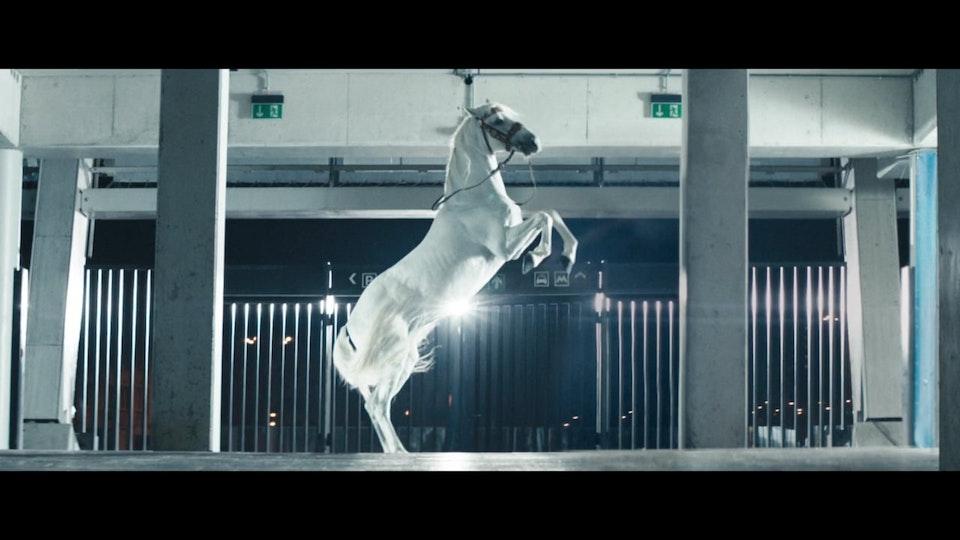 Julien Alary - Canal Digital Love - Martin Werner