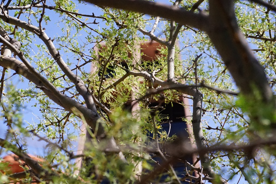 Sony A7II Mirrorless: Nature and Street - Chapel of the Holy Cross  Sedona, AZ