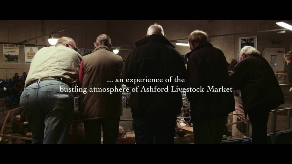 Cattle Market | Dir: Sean Parnell - Trailer for short documentary Cattle Market, directed by Sean Parnell. Shot by London based Cinematographer/Director of Photography Connor Adam.