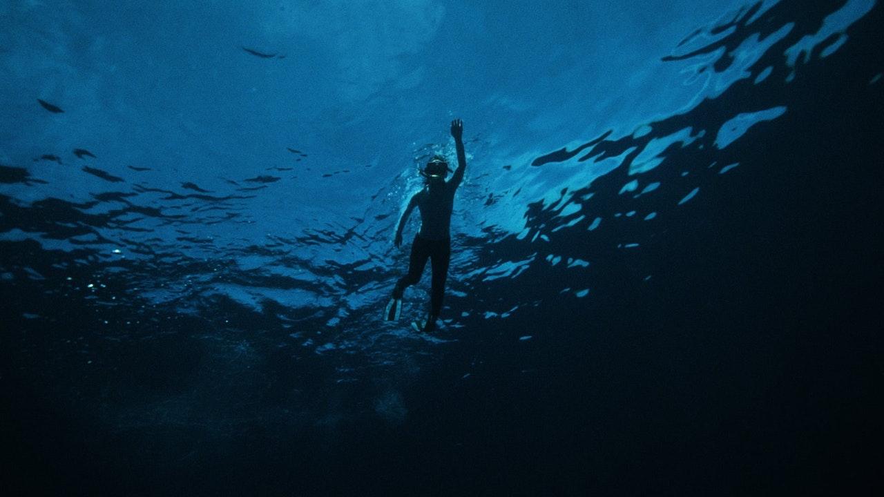 ADIDAS - RUN FOR THE OCEANS