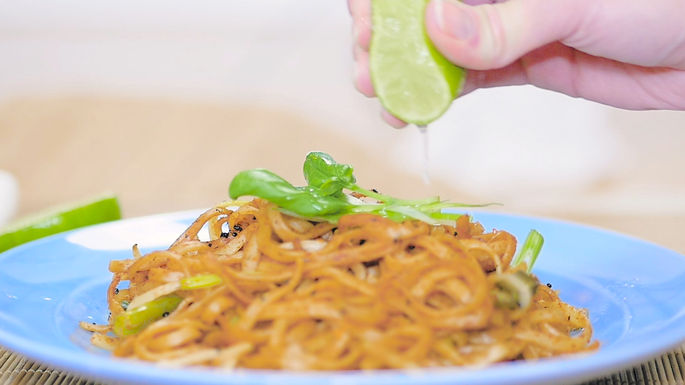 JZ PRODUCTIONS - Pad Thai Recipe with Ants, for Oh My Bug