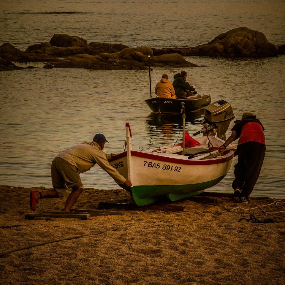 Seaing things IMG_4088-Edit-3