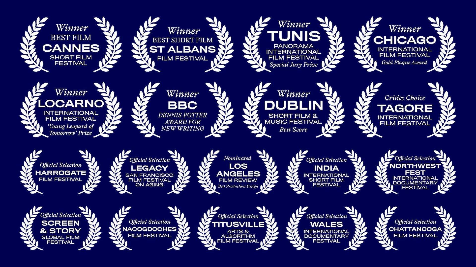 Selected Film Festival Awards