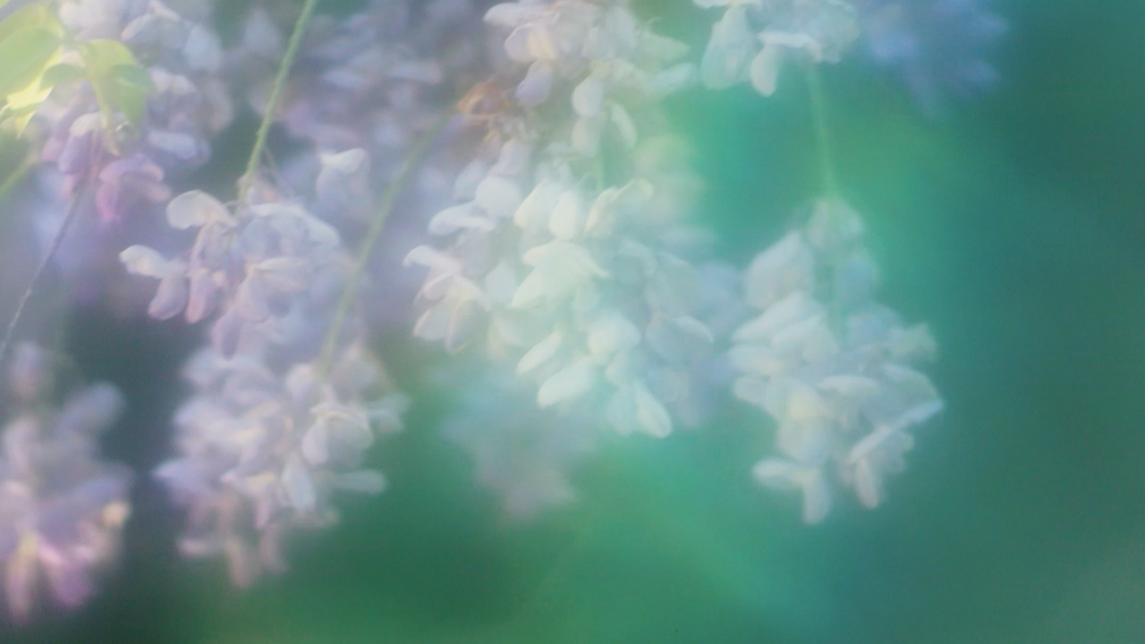 Botanics -